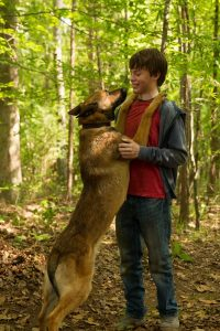 Max Interview: Sheldon Lettich on Tom Sawyer, Rin Tin Tin, Van Damme and Stallone